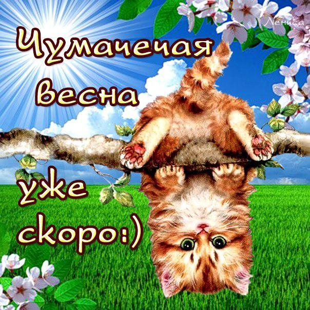 Юморные открытки про весну