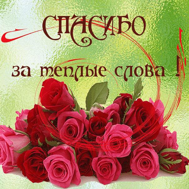 открытка фото спасибо
