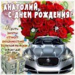 Анатолий гиф картинки день рождения