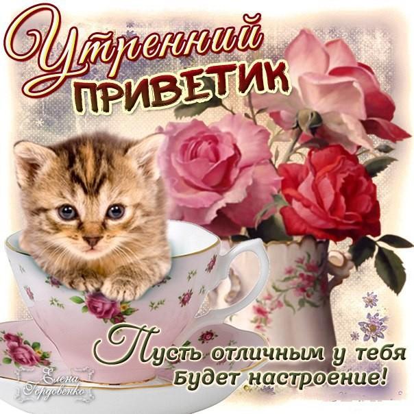 Утренний привет друзьям любимым позитив утро