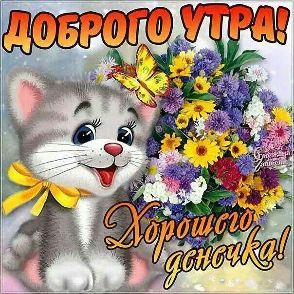 Доброго утра и хорошего дня картинка позитив