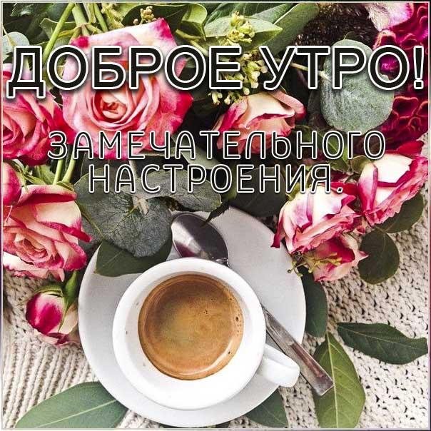 удачного утра, сказочно красивого утра, сладкого утра, восхитительного утра, бодрого тебе утра, солнечного утра