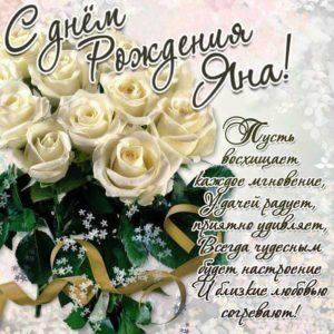 Белые розы букет картинка с фразами день рождения Яна