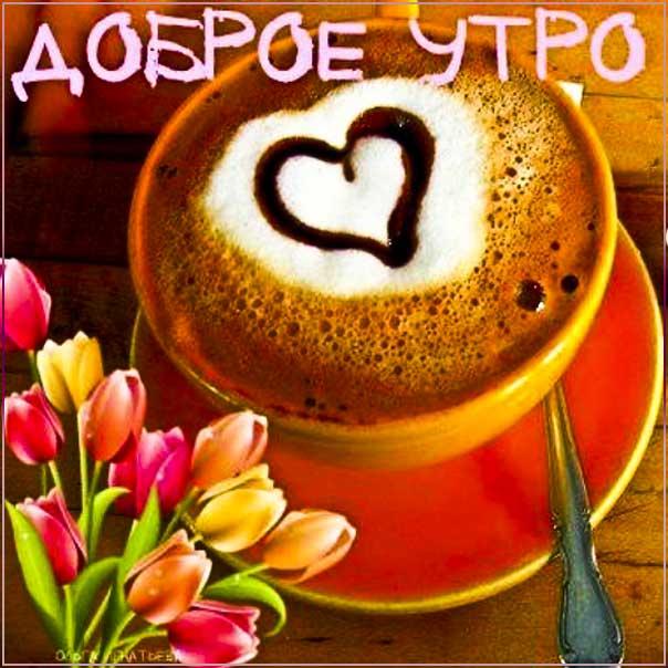 Открытка доброго утра. Позитивного начала дня, утренний позитив, тюльпаны, утро кофе, текст, красивая надпись утро, со стихом, мигающая, картинки, пожелание, картинка.