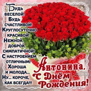 День рождения Антонина открытка-картинка. Корзина с розами, надпись, стих, поздравление