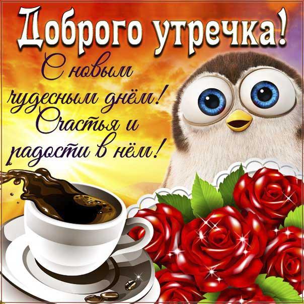 Открытка доброго утречка. С новым чудесным днем, со словами, яркого утра приятных эмоций, обнимаю, цветы, сияние, утренний позитив, сова, мигающие, стихи, картинки пожелать.