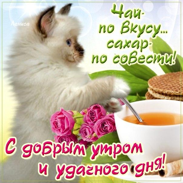 Веселая открытка доброе Утро